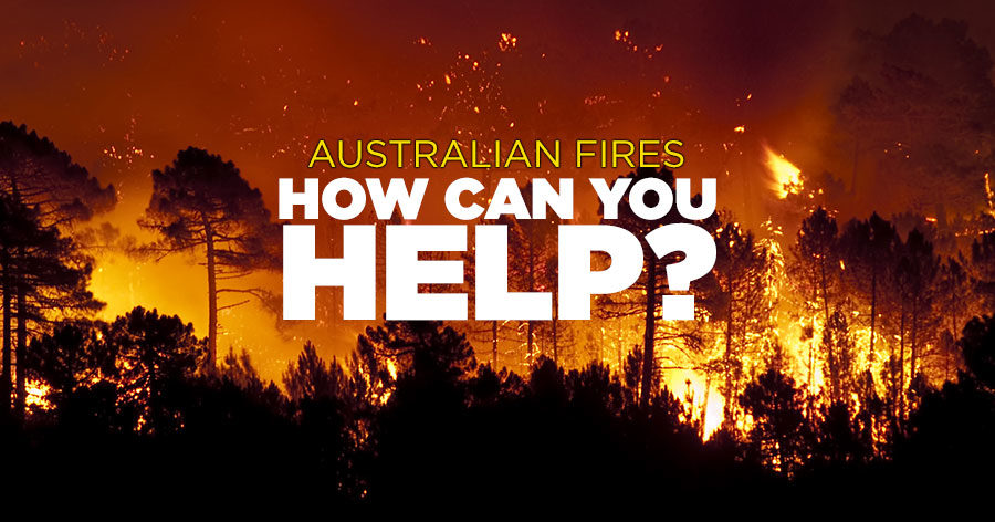 Fire Appeal - How can we help?